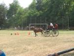 Táborhelyszínek Szaknyér Ifjúsági Tábor községi sportpálya