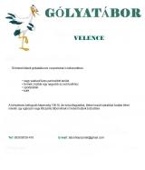 Táborhelyszínek Velence Ifjúsági Tábor Gólyatábor
