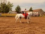 taborhelyszinek-sarospatak-ifjusagi-tabor-lovaglas