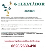 Táborhelyszínek Sopron Gólyatábor