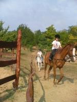 Táborhelyszínek, Somogydöröcske Ifjúsági Tábor lovaglás