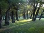Táborhelyszínek, Szentendre Ifjúsági Tábor, park