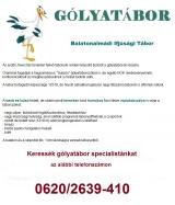 Táborhelyszínek Balatonalmádi Ifitábor Gólyatábor