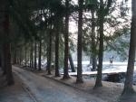 Táborhelyszínek, Királyrét Fogadó és Erdei Hotel, patak