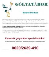 Táborhelyszínek Balatonföldvár Gólyatábor